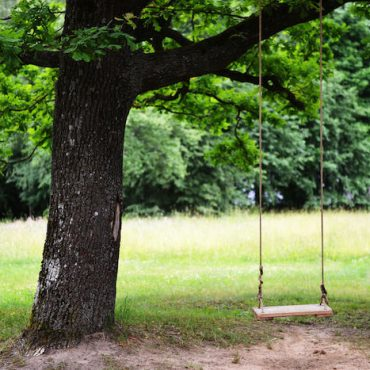 No Sweat! Here's How to Hang a Baby Swing from a Tree