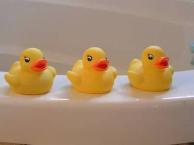 rubber duckies toy
